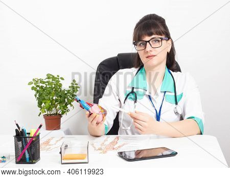 Female Doctor Cardiologist With A Mock Heart In Hands In A Doctor's Office. The Concept Of Treatment