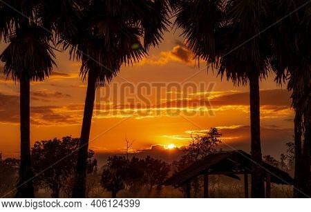 Beautiful Orange Sunrise Behind The Clouds. Silhouette Old Hut In Forest Near Sugar Palm Tree In The