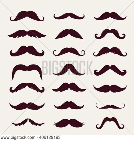 Mustache Trendy Styles Set. Brown Mustache Curly Horseshoe Imperial Pencil English Pyramid Italian A