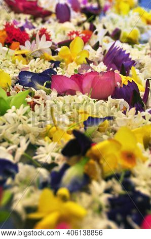 Lush Abundance Of Multicolored Flowers. Abstract Background Of Composed Heaps Of Beautiful Fragrant