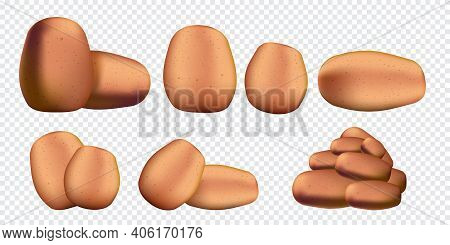 Raw Potatoes Set Isolated On Transparent Background. Vector Realistic 3d Potatoes Collection