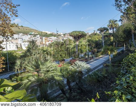 Arucas, Gran Canaria, Canary Islands, Spain December 13, 2020: View Of City Park, Garden At Old Town