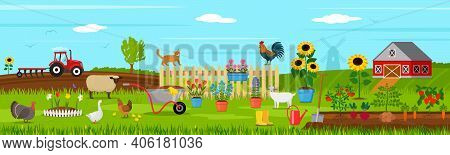 Summer Landscape On A Farm With Pets And Livestock With Green Beds And Rural Tools. Garden And Rural