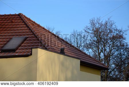 Protection Of The Facade Insulation Cannot Be Done Without Deterring Bird Scarecrows In The Form Of