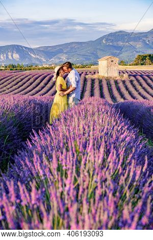 Provence, Lavender Field At Sunset, Valensole Plateau Provence France Blooming Lavender Fields. Euro
