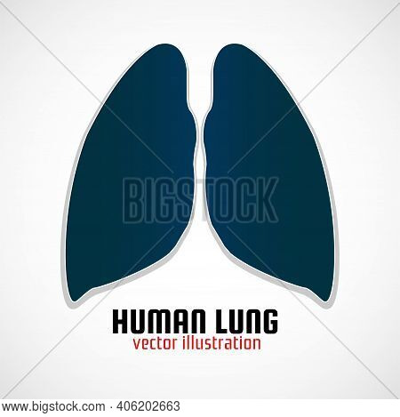 Human Lungs With Shadow On A White Background. Medical Concept, Logo, Symbol, Icon, Vector Illustrat