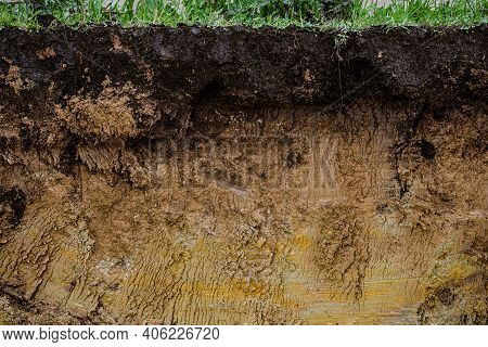 Cut Of Natural Soil With Different Layaers. Grass, Chernozem Soil And Clay Ground Wall After Working
