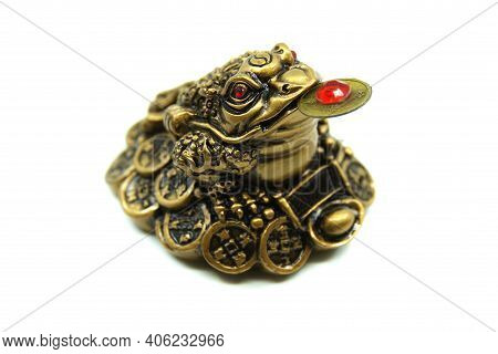 Chinese Feng Shui Lucky Money Frog With Coin. Isolated On White Background. Closeup