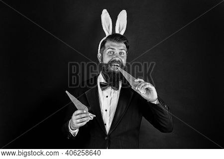 Here Comes Easter Bunny. Bearded Man With Bunny Ears Eat Carrots. Bunny Costume Accessory. Symbol Of