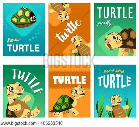 Bright Leaflet Designs With Cute Turtle. Colored Funny Marine Character In Different Poses On Cards.