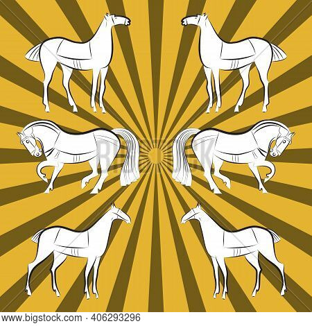 White Horses Silhouettes Set. Mustangs Three Pairs On Yellow And Mustard Rays Background. White Colo