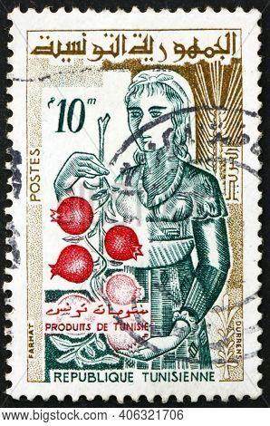 Tunisia - Circa 1959: A Stamp Printed In Tunisia Shows Unvelled Woman Holding Pomegranates, Circa 19