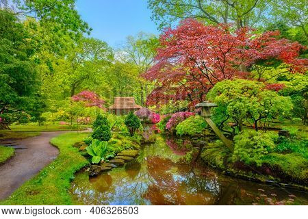 Little Japanese garden after rain, Park Clingendael, The Hague, Netherlands