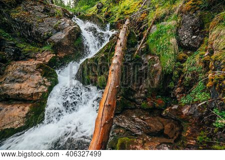 Scenic Landscape With Beautiful Waterfall In Forest Among Rich Vegetation. Atmospheric Woody Scenery