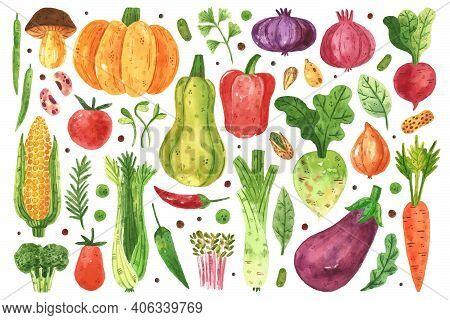 Vegetables Clip Art, Set. Pumpkin, Corn, Carrot, Greenery, Radish, Pepper. Watercolor Illustration.