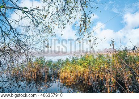 Idyllic Lake Scenery In The Fall With Colorful Rushes Under A Bright Blue Sky