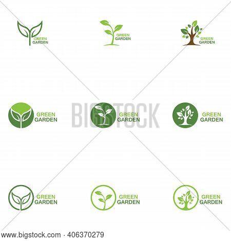 Green Garden Green Leaf Ecology Logo Vector Design