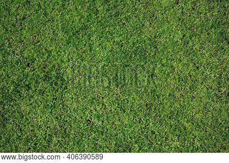 Top View Of Green Artificial Grass In Outdoor Garden.    Green Grass For Background Texture. Golf Co