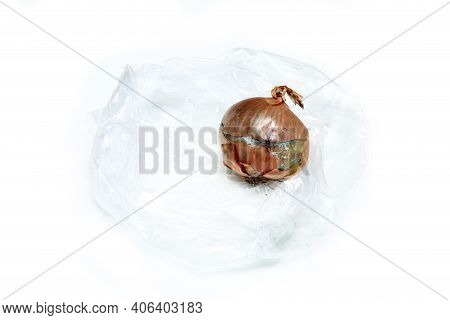 The Picture Of A Mouldy Onion Because Of The Wrong Storage In Hdpe Sack. Rotten And Uneatable. Isola
