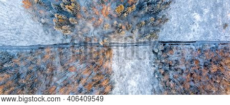 Track in wet ground left by logging tractor in winter forest from above