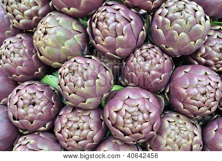 Artichokes Of Roma