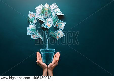 Hands Holding Money Tree Made By Us Dollar Bills. Business, Saving, Growth, Economic Concept. Invest
