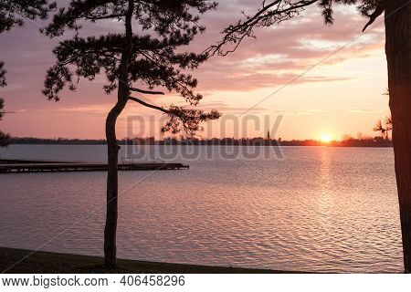 Colorful Summer Sunset On The Palic Lake, In Subotica, Serbia, With A Focus On A Pine Tree. Also Kno