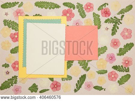 Page From An Old Photo Album. Flowers Phlox. Scrapbooking Element Decorated With Leaves, Flowers And