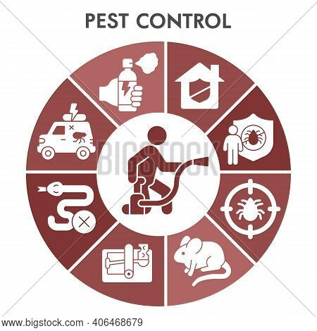 Modern Pest Control Infographic Design Template With Icons. Anti Pest Infographic On White Backgroun