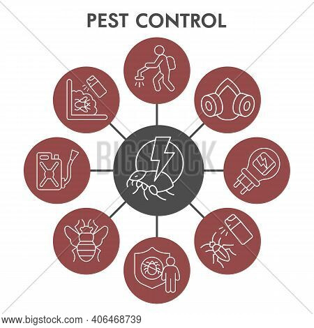 Modern Pest Control Infographic Design Template With Icons. Anti Pest Infographic Visualization Bubb