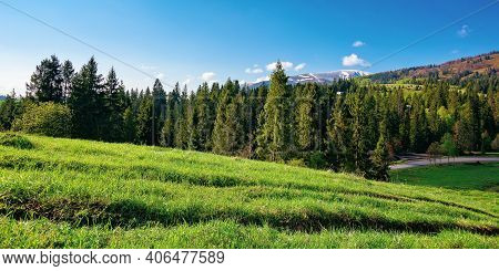 Countryside Landscape In The Morning. Beautiful Mountain Landscape In Springtime. Sunny Weather With