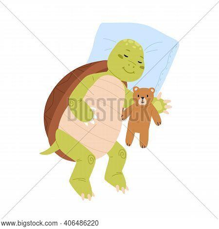 Cute And Funny Turtle Sleeping With Teddy Bear. Sleepy Tortoise Lying With Soft Toy. Childish Animal