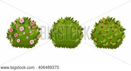 Spring Bush, Shrub Green Garden Cartoon Hedge Set With Green Leaves, Flower Blossom,berries. Summer