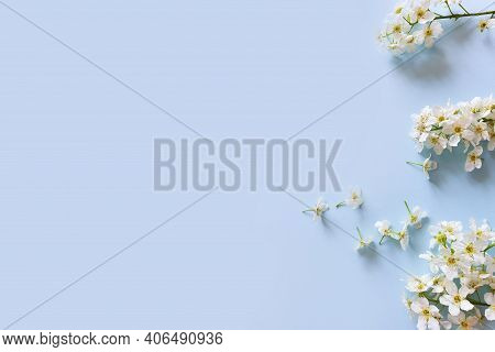 Small White Spring Flowers On Blue Background. Floral Frame Or Border, Basis For Invitations Or Prod