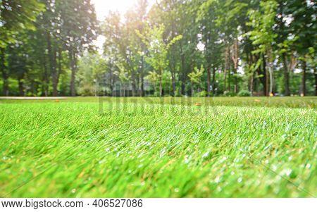 Artificial Grass Closeup. Artificial Turf In A Summer City Park. Blurred Background.