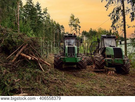 Crane Forwarder Machines At During Clearing Of A Plantation. Wheeled Harvester Transports Raw Timber