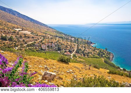 Scenic Coastline Of  Of Brac Island, Dalmatia Archipelago Of Croatia