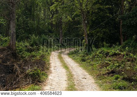Empty Rural Road And Hiking Trail In The Forest. Chitwan Jungle Nepal
