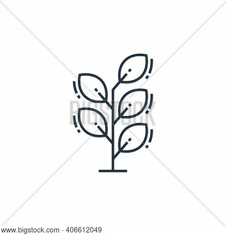 plant icon isolated on white background from environment and eco collection. plant icon thin line ou