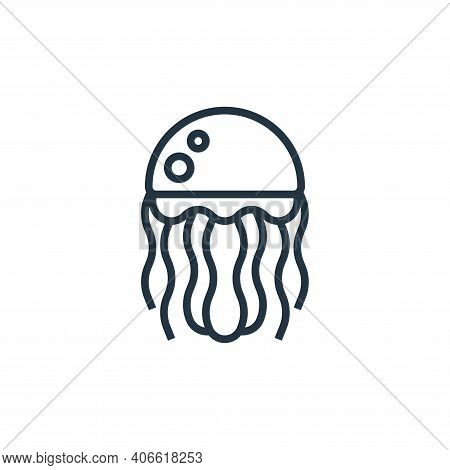 jellyfish icon isolated on white background from seafood collection. jellyfish icon thin line outlin