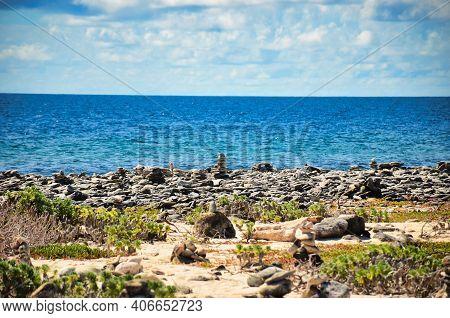 Rocks On The Beach, Cairn At The Sea Of Caribbean, Island Of Bonaire, Antilles Abc Island Netherland