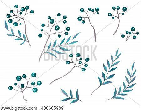 Watercolor Illustration Of Amazing Branches With Dark Blue And Aquamarine Little Berries With Colorf