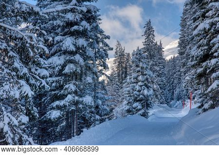 Winter Wonderland, Freshly Snow-covered Trees With A Winter Hiking Trail. Swiss Mountain Landscape I