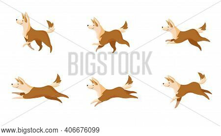 Fast Or Slow Dogs Movement Set. Side View Of Cartoon Pet Walking Or Running Isolated On White Backgr