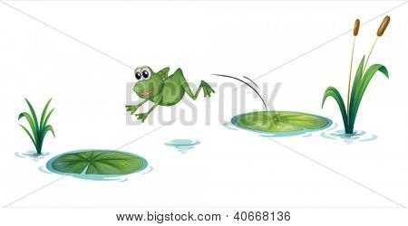 Illustration of a jumping frog on a white background