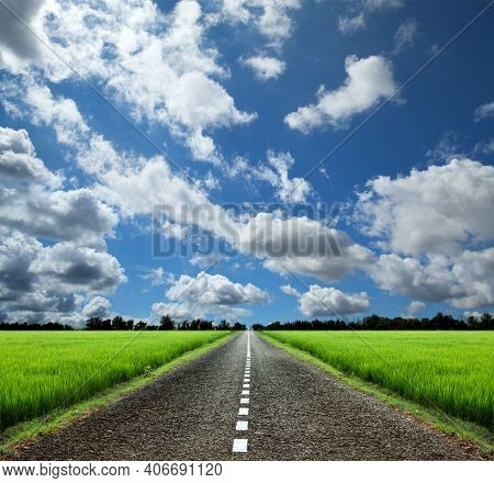 Summer Country Road With Trees Beside. Rural Environment Road. Nature Road. Asphalt Road. Summer Cou