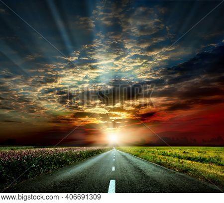 Asphalt Road. Summer Country Road With Trees Beside. Rural Environment Road. Nature Road. Asphalt Ro
