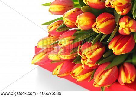 Tulip Bouquet. Colorful Tulips. Tulips. Beautiful Tulips In Spring. Colorful Tulips. Tulips In The G
