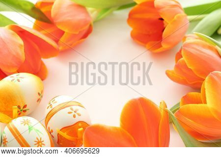 Beautiful Tulips For Postcard Designs. Colorful Tulips. Tulips. Beautiful Tulips In Spring. Colorful