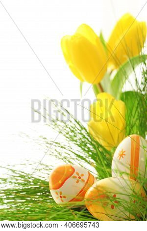 Tulips. Beautiful Tulips In Spring. Colorful Tulips. Tulips In The Garden. Beautiful Tulips For Post